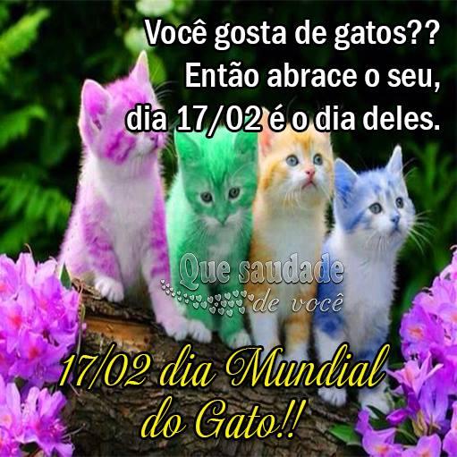 Dia Mundial do Gato Imagem 1