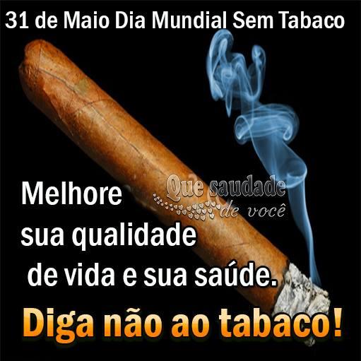 Dia Mundial sem Tabaco Imagem 1