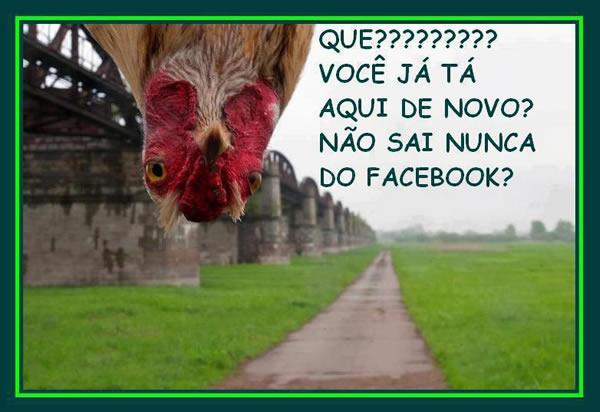 Humor no Facebook Imagem 5