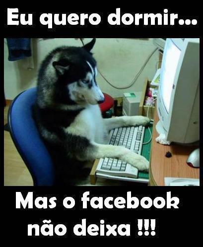 Humor no Facebook Imagem 8